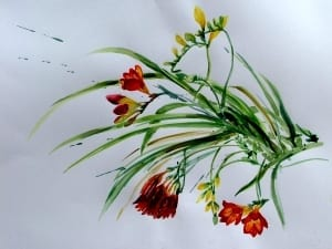 Freesias 2 lr