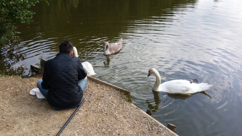 Rescuer Chris at Ditchling Common Pond