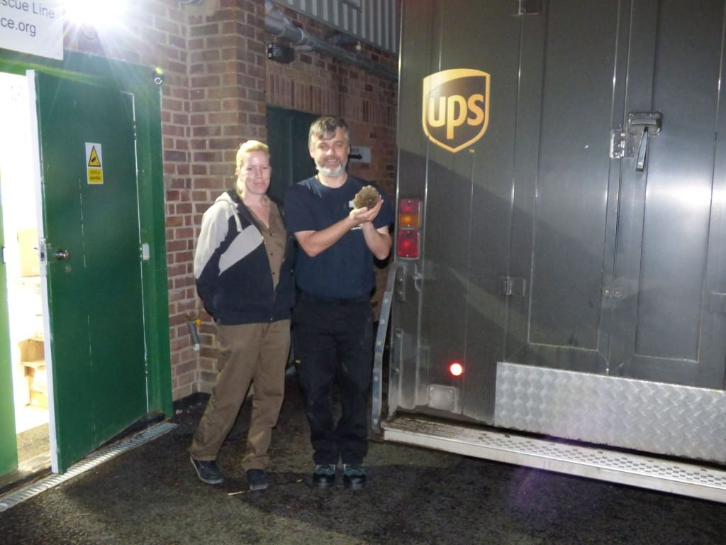 Trevor with the UPS Delivery Driver and hedgehog