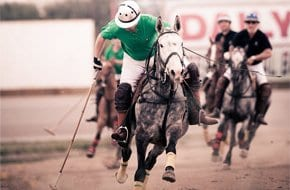 Polo in Malta - the sport of Kings.....