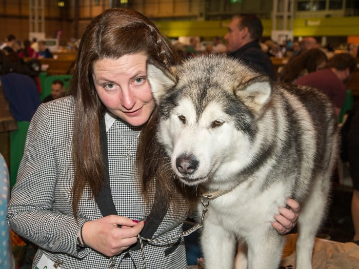 Alaskan Malamute Rosie and owner Suzy