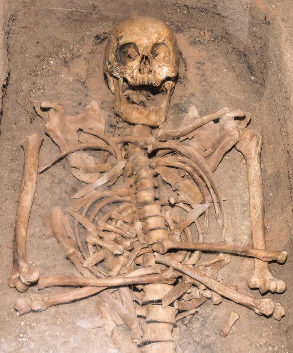 Skeleton-found-in-Bordesley-Abbey