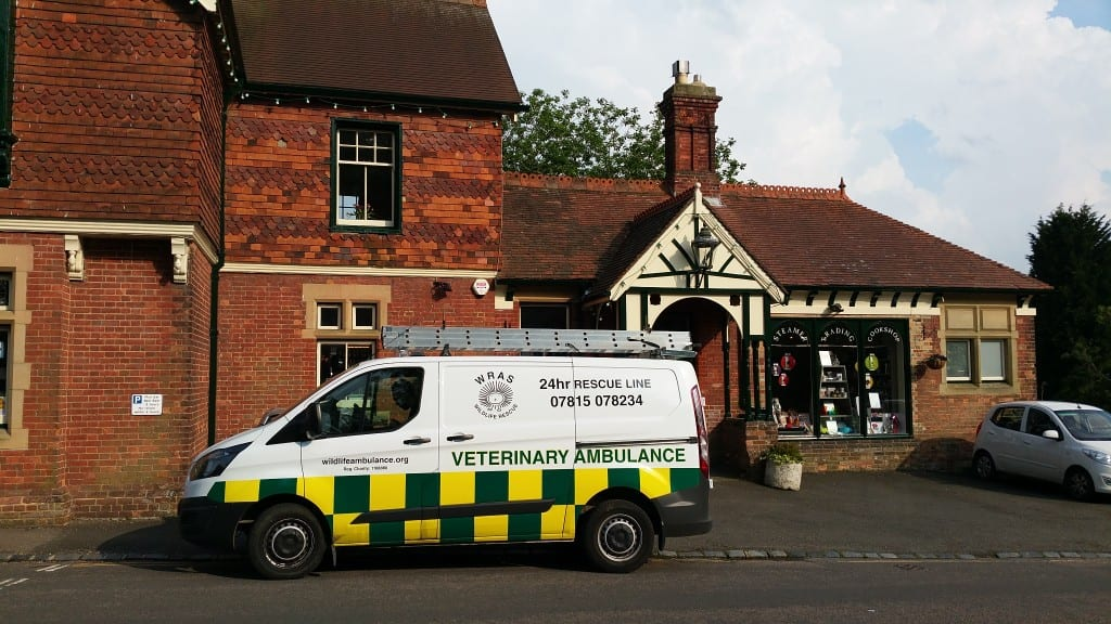 WRAS ambulance outside shop in Heathfield at Jackdaw Rescue 7th June 2016