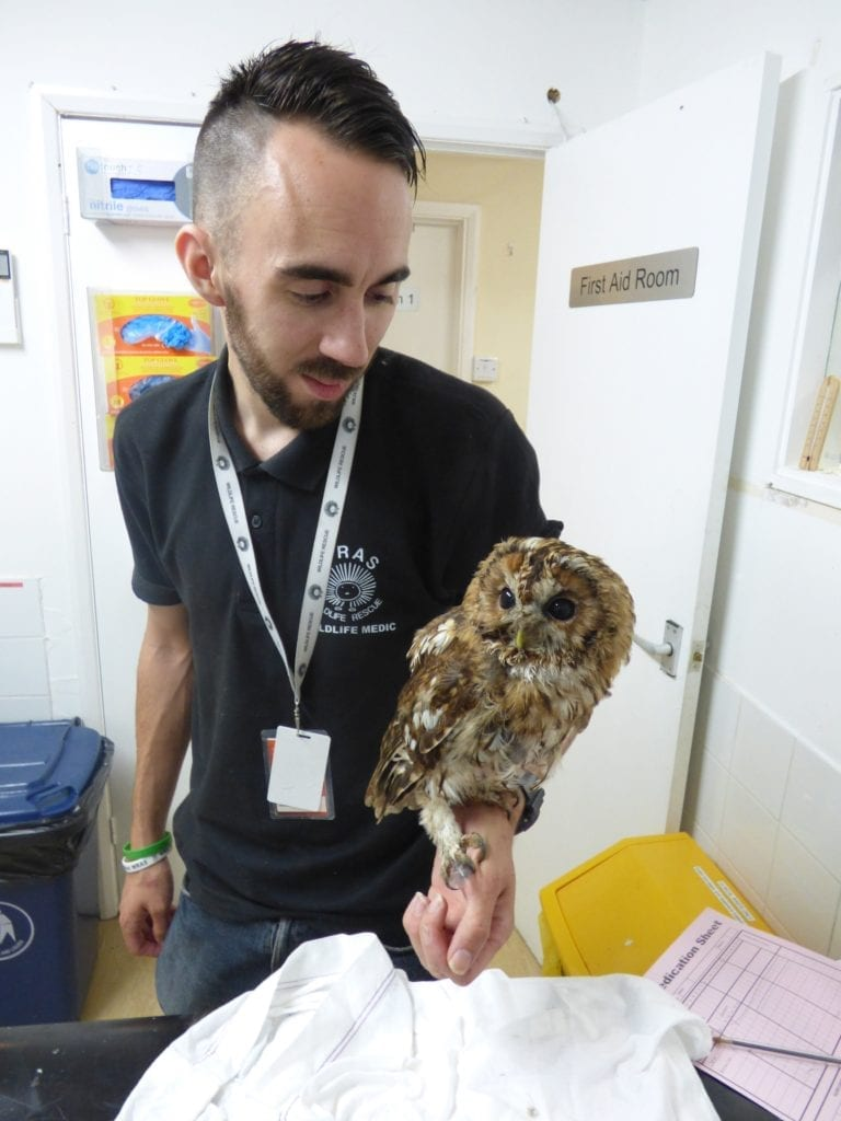 Rescue Manager Chris Riddington with the rescued Owl s