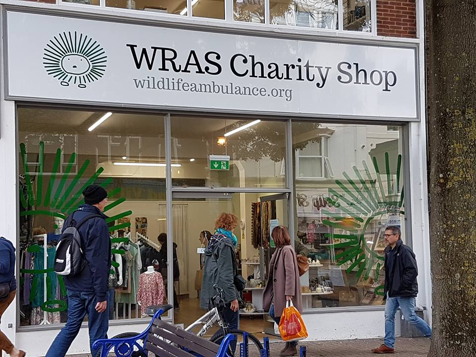 wras-charity-shop-opening-3