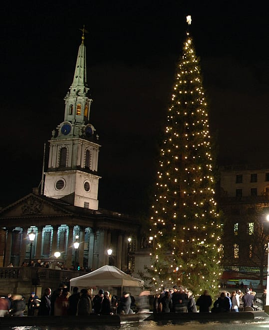 christmas-tree-in-Trafalgar-Square