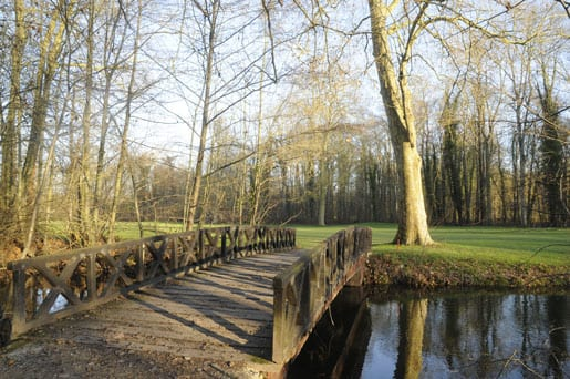 -a-wooden-bridge-in-the-park