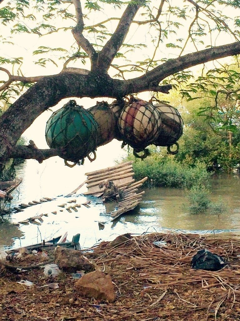 Ship floats hanging by a tree.
