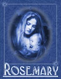 rosemary-and-its-associations-with-Mary