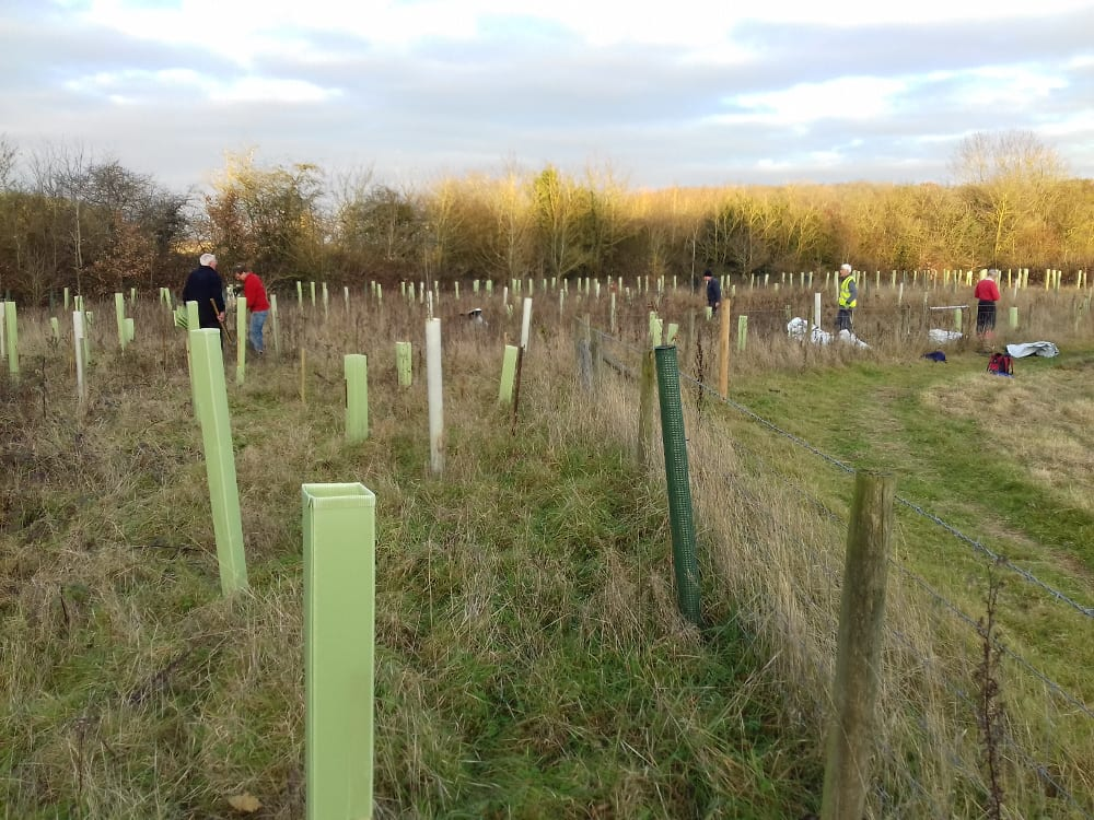 Bubbenhall tree planting Photo by Karl Curtis
