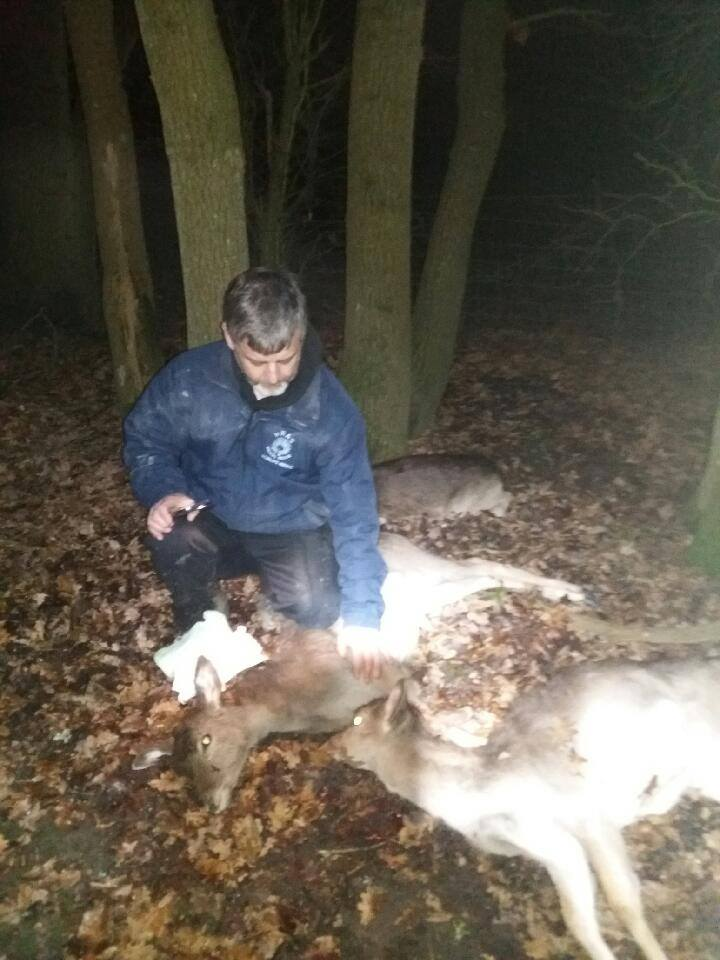 Upset Trevor Weeks with the three dead deer (2)