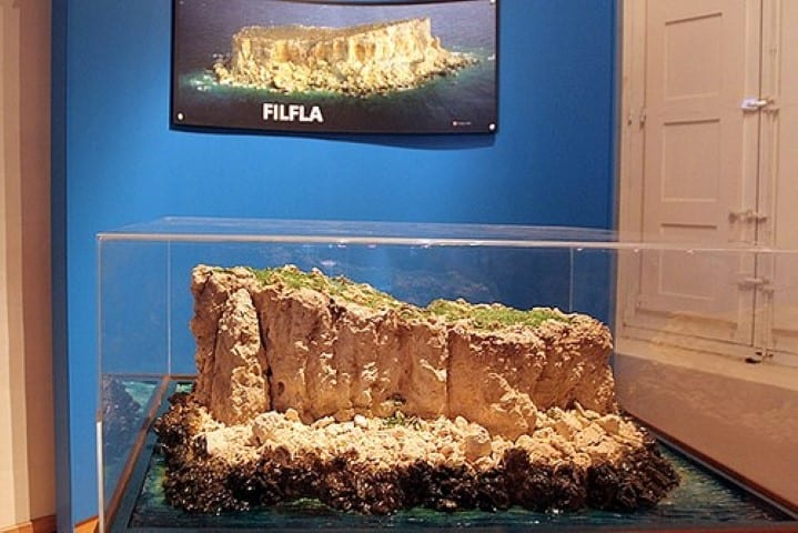 MalDia A model reconstruction of the small island of Filfla showing its geological formation