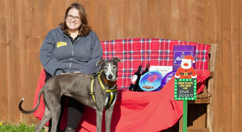 Pic Dogs Trust Salisbury get ready for their Christmas Fayre