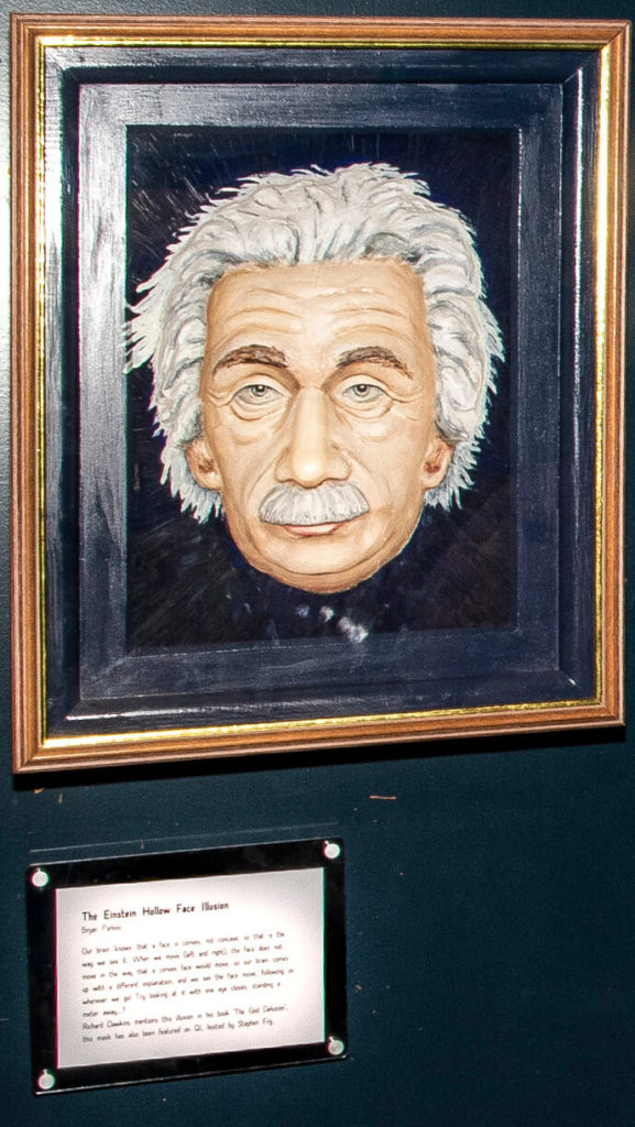 Pic The Einstein Hollow Face Illusion by Bryan Parkes