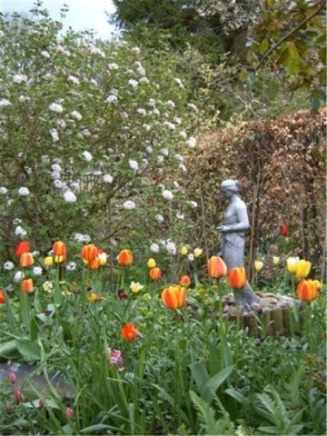 Pic Ivy House Garden