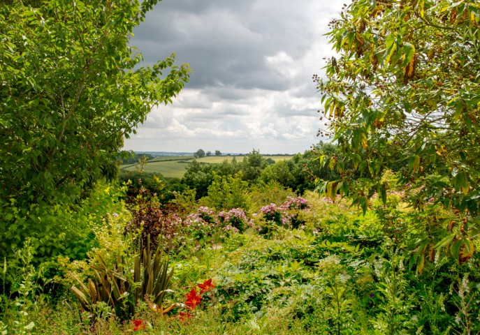 Pic Fresh open air can be a real boost for our health and wellbeing