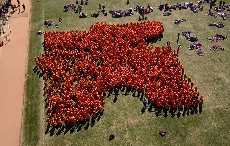 Pic Human jigsaw puzzle Pic Guinness Book of World Records