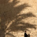2. Local walking past a large shadow of a palm tree. Sousse.