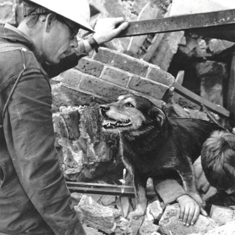 Pic Rip rescued around people during the bombings of London