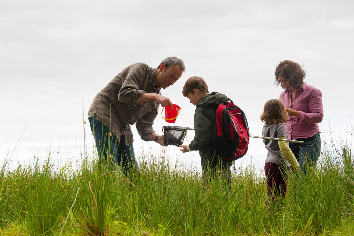 Pic Take the family on a bug hunt C Paul Harris VISION