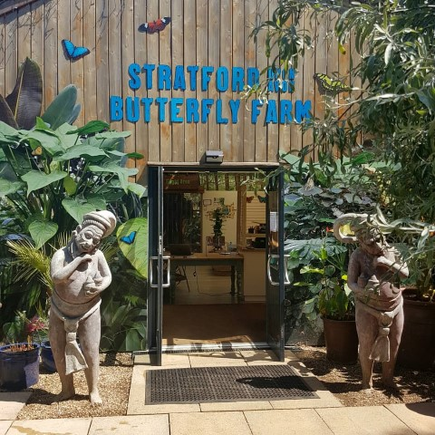 Pic Stratford upon Avon Butterfly Farm