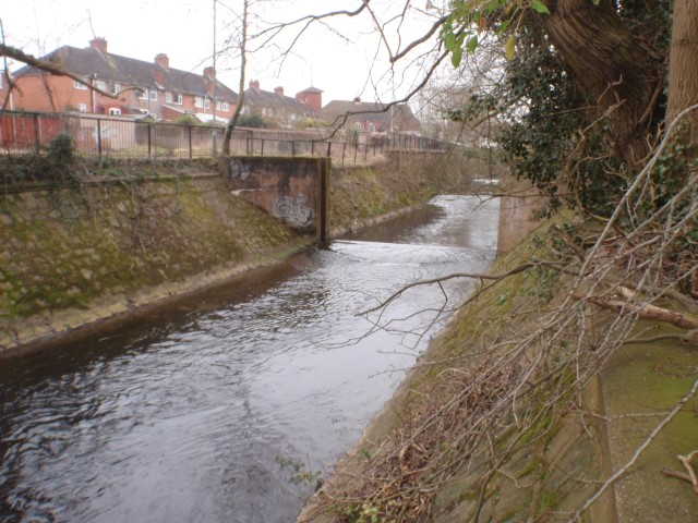 Pic Weir and heavily canalised river Photo by Anna Squires