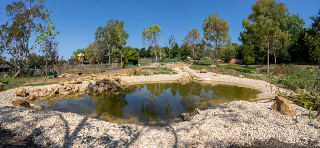Pic The new pond is looking good