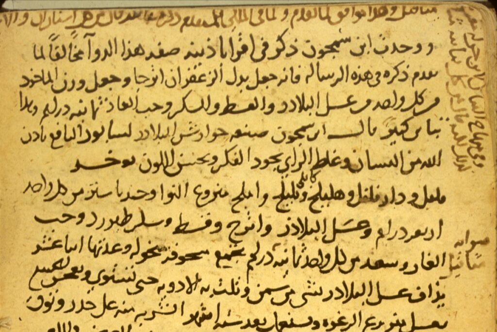 MalDia Abate Vella claimed to have discovered ancient Arabic parchments