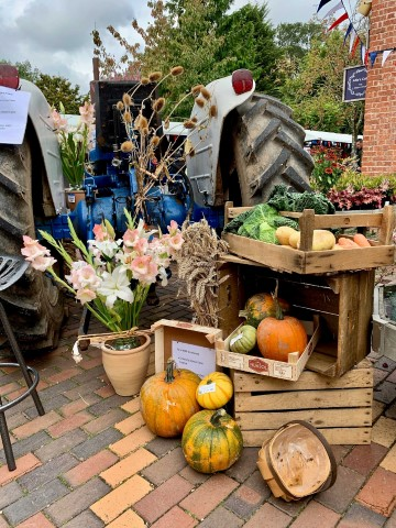 Pic Harvest festival taking place at Hatton