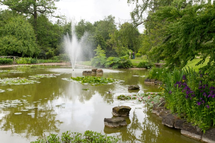 Pic Lake and fountains at Cliveden Gardens