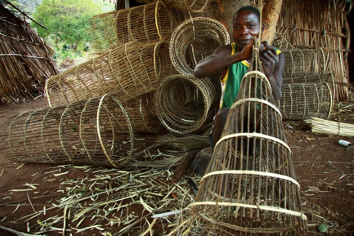 Making fishing traps on Chisi Island