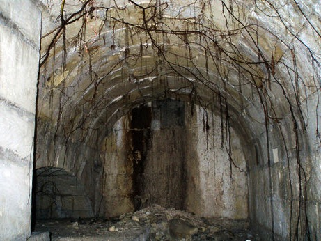 MalDia Tunnel entrance shrouded in cobwebs and plant roots