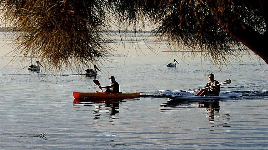 PELICAN AND KAYAKERS AT THE ENTRANCE