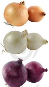 MalDia-02-24-03-21-Three-types-of-onions-versatile-curative-powers.