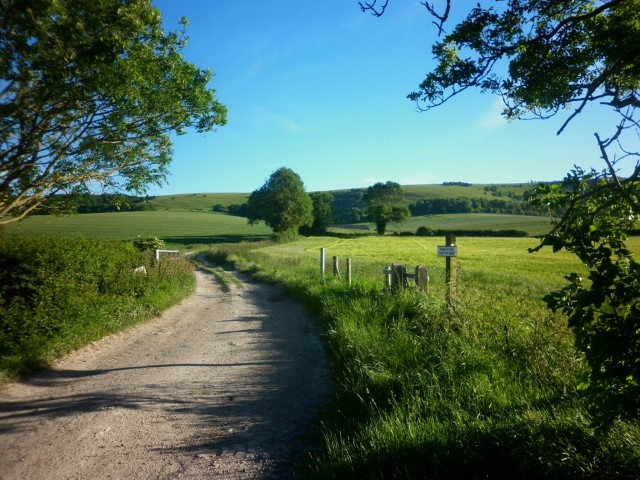 FTH07-5-Farm-road-in-the-Downs-1