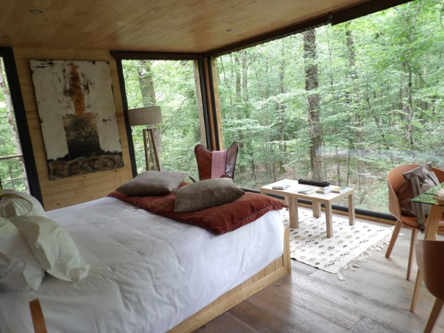 6-Your-bedroom-lost-in-forest