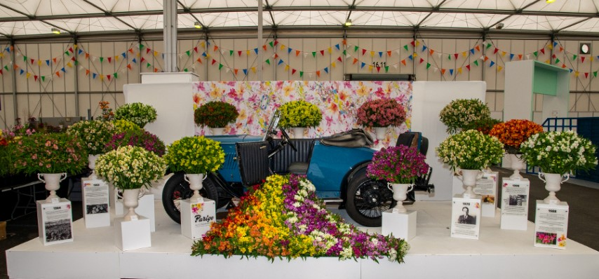 Pic-4.-So-much-to-see-in-the-Floral-Marquee