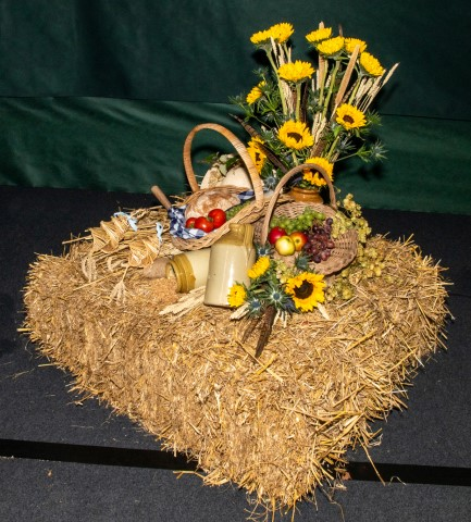 Pic-2.-A-Harvest-Hamper-by-Audrey-Yarranton-Pic-by-Rob-Tysall